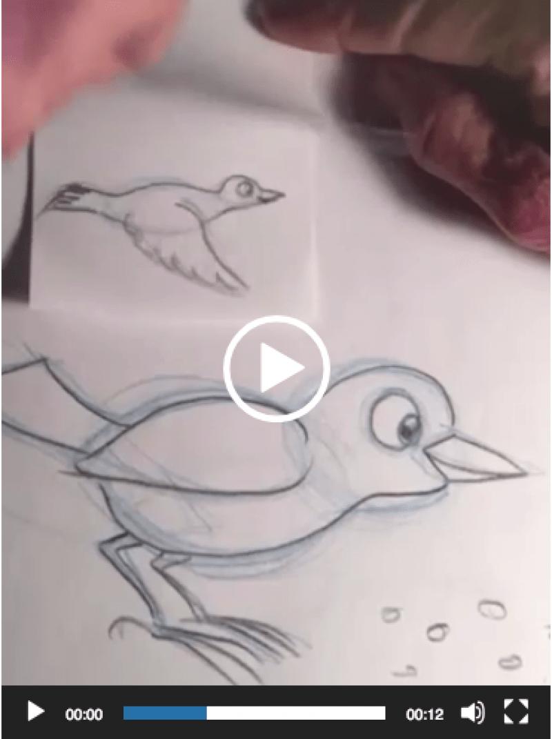 bird-flip-scrnshot